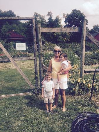 Muscoot Farm: family day the farm