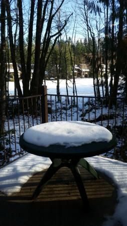 Whispering Woods Resort: Winter patio and golf course view
