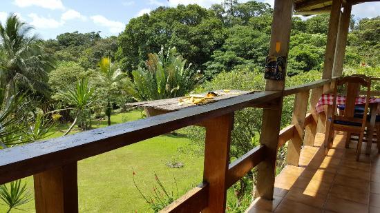 Nuevo Arenal, Costa Rica: 20160118_111251_large.jpg