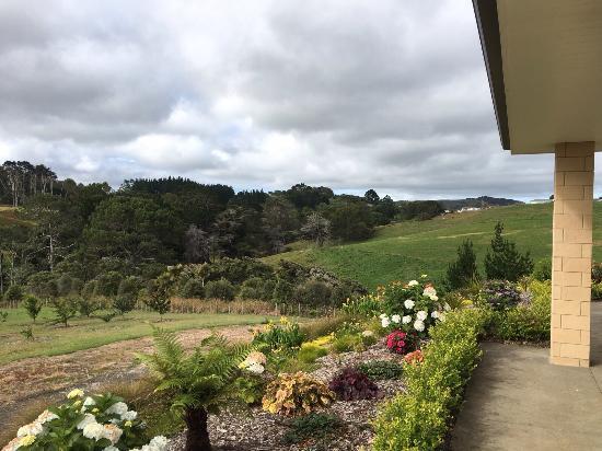 Kumeu, New Zealand: View from the bedroom