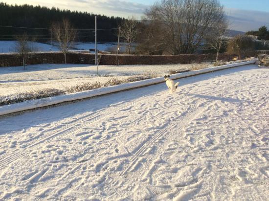 Pettigo, Ирландия: Winter time @ hilltop