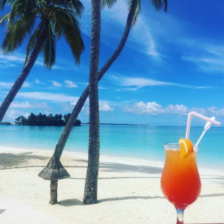 Veligandu Island Resort & Spa: View from the bar on the beach