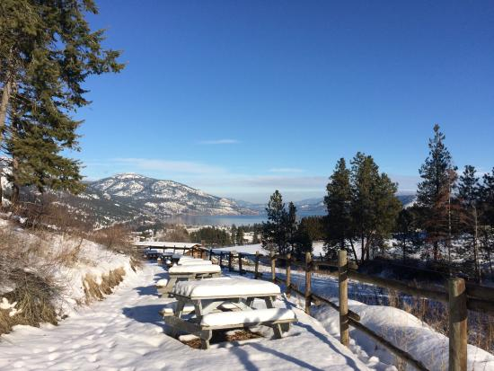 West Kelowna, Canada: Our Picnic Area - January 2016