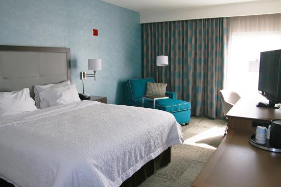 Hampton Inn Lakeland- North I-4: NEW King w/ Chaise Lounge