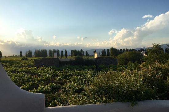 Cavas Wine Lodge: photo3.jpg