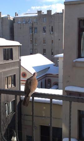 Entes Apart Hotel: На балконе номера 5-го этажа