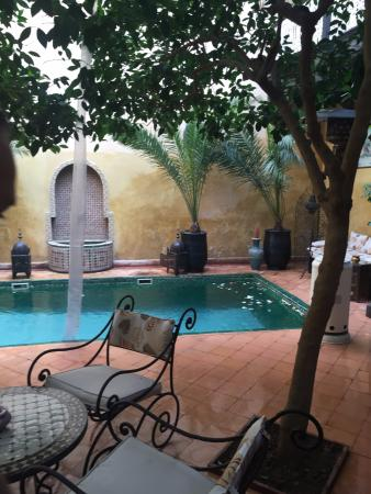 Riad du Petit Prince: relaxing by the little pool under the orange trees