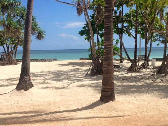 Diamonds Mapenzi Beach Club: Beach View