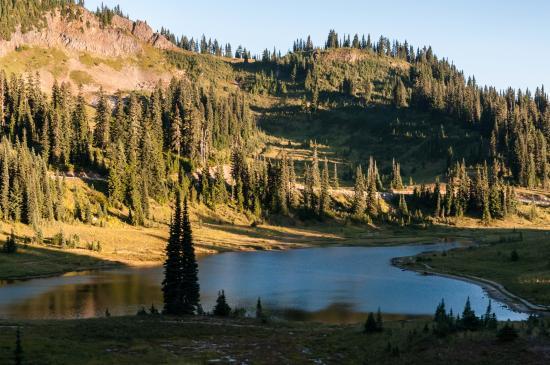 Tipsoo Lake Loop : Tipso Lake & Loop from Naches Peak Loop