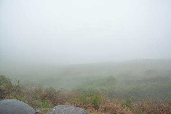 Caherdaniel, İrlanda: But the fog didn't allow us the view!