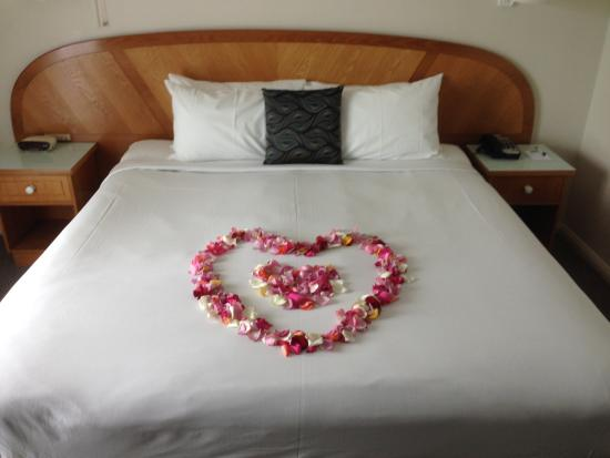 Cairns Sheridan Hotel: Romantic proposal - Yes