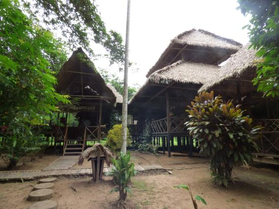 Wasai Tambopata Lodge: Parte del comedor, bar y area comun.