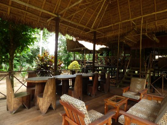 Wasai Tambopata Lodge: Area comun rodeado de la selva y la tranquilidad que solo en este lugar se puede sentir.
