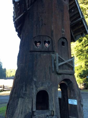 Myers Flat, Californien: Two story tree houses
