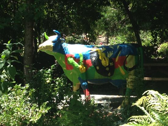 Danville, Kalifornia: love the painted cow at rombauer