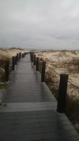 Gulf Shores Plantation : boardwalk through the dunes leading to the beach