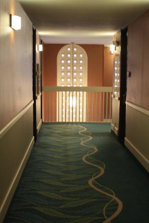 Howard Johnson Anaheim Hotel and Water Playground: retro hall