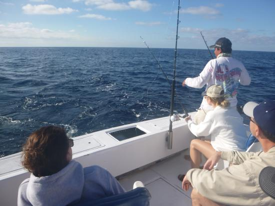 BJC Fishing Charters