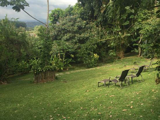 Pura Vida Hotel: photo1.jpg