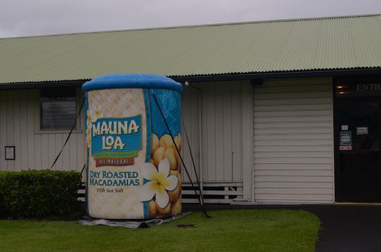 Keaau, Hawaje: Mauna Loa