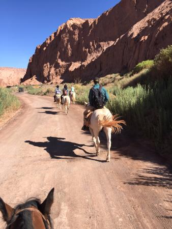 Atacama Horse Adventure - Day Tours