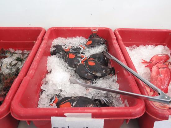 Poke picture of suisan hilo tripadvisor for Hilo fish company
