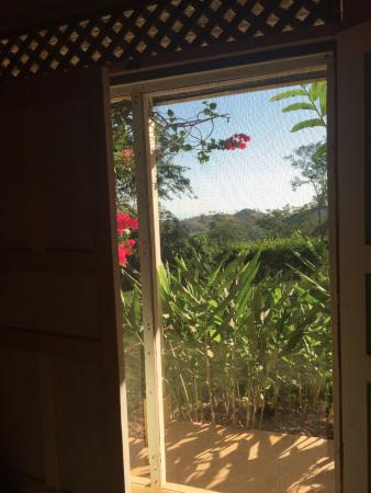 Rancho Ricco: View from the room