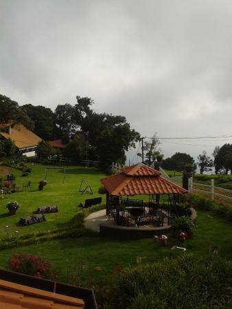 Altura Hotel: Jardines