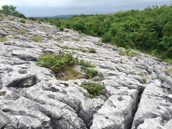 Kilfenora, Irlande : Beautiful limestone