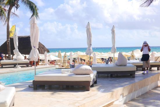 Kool Beach Club: Лежаки у бассейна