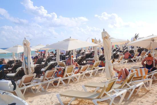 Kool Beach Club: А это лежаки на пляже)