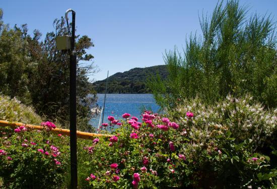 Cabanas Puerto Pireo: los jardines, espectaculares