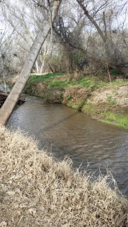 Santa Cruz river along Anza trail