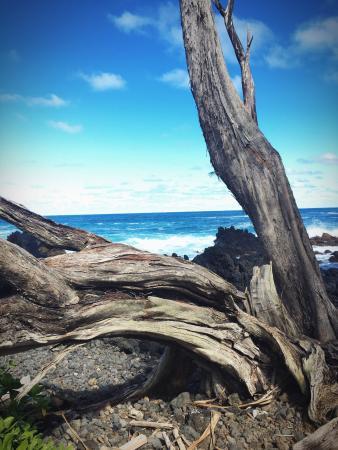 Haiku, Havai: photo4.jpg