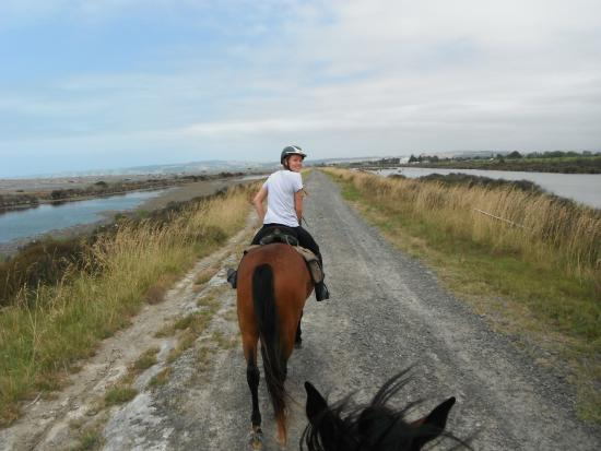 Clive, New Zealand: Road home