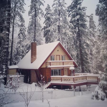 Idyllwild, Καλιφόρνια: The day we got snowed in!