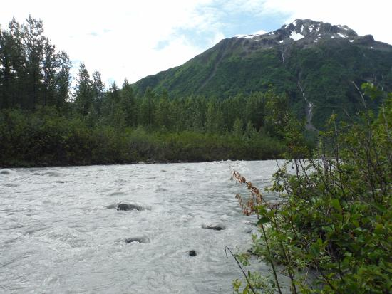 Kenai Fjords Nationalpark, AK: Outwash was strong after the rain the day before