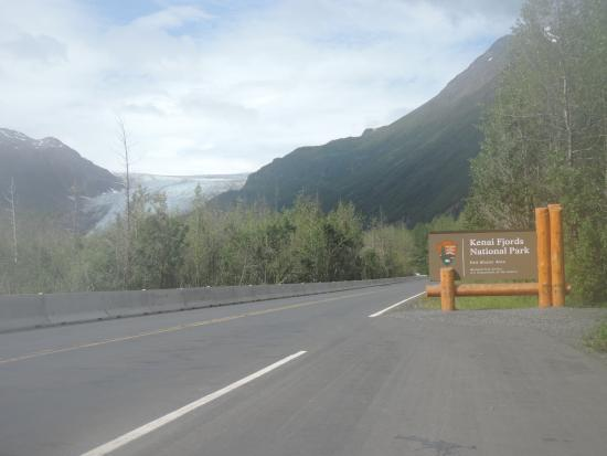 Kenai Fjords National Park, AK: Exit Glacier from the road