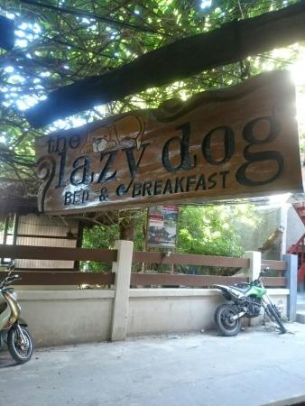 Lazy Dog Bed & Breakfast: IMG_20160115_080939_large.jpg