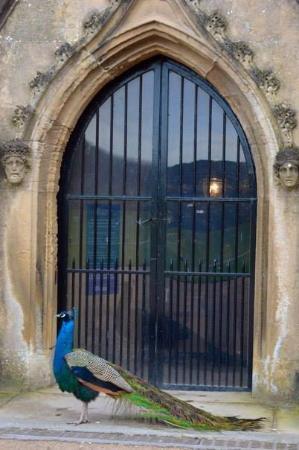 Ravenshead, UK: Entrance to  Newstead Abbey house