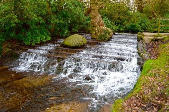Ravenshead, UK: Opposite the cascade