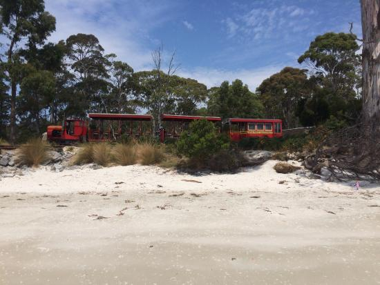 Tasmania, Australia: photo4.jpg