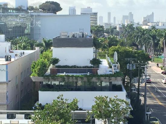 Gale South Beach Hotel Miami Tripadvisor