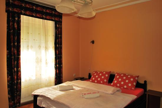 Photo of Hostel Podbara Novi Sad