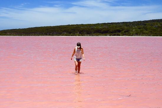 Pink Lake Esperance Tours