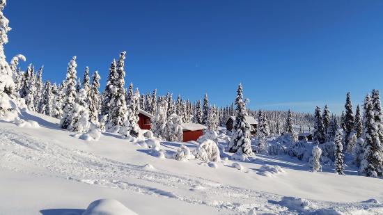 Noresund, Norvegia: Full white scenary