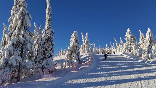 Noresund, Norvegia: Norefjell beginners slope