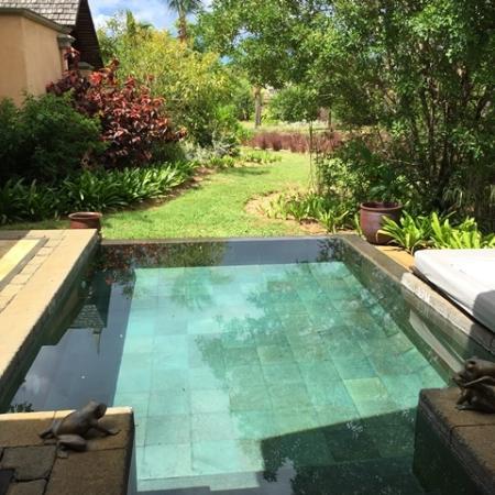 Maradiva Villas Resort and Spa: Villa 309 - Plunge Pool