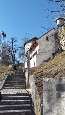 Velenje, Eslovenia: Vista dalle scale che portano al castello