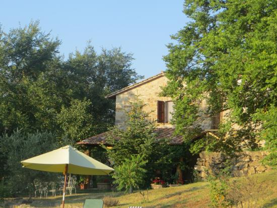 San Venanzo, Italia: View of the house from the pool